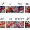 フェロー捕獲大作戦Ⅱ(集いし賢狼/寒空を覆う翼)